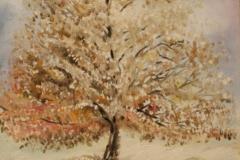 Inverno olio su tela 35x25 - 2008 collezione privata