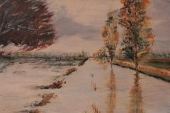 Megliadino - l'alluvione 2010 olio su pannello telato 30x40 - 2011
