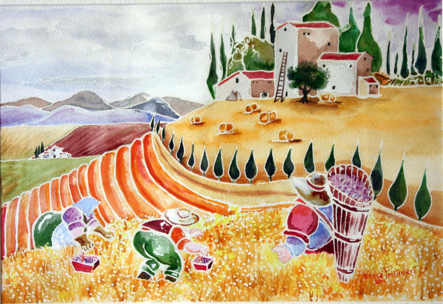 La Raccolta Aquerello 50x60 - 2011