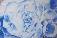 Blu Gardenia Acquerello 50x35 - 2009