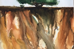 Lanzarote la vecchia quercia Acquerello 30.5x45,5 - 2020