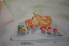 Zucche studio n. 2 Acquerello 50x35 - 2010
