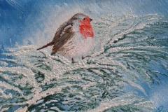 Pettirosso olio su tela 35x25 - 2008 collezione privata