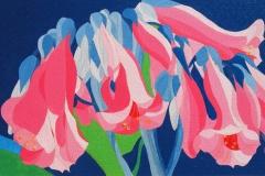 Fiori rosa olio su tela 50X30 - 2008 collezione privata
